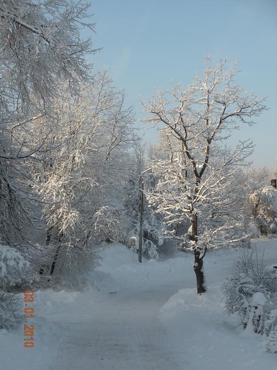 Viss kā pasakā balts un... Autors: Domia Ziema