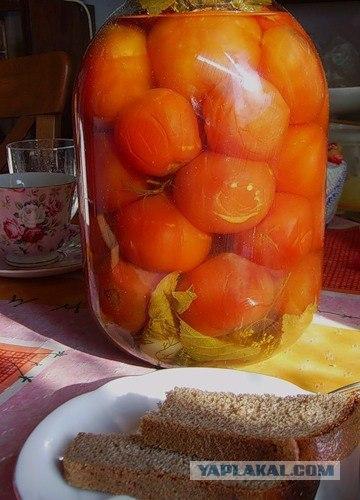 Marinēti tomātiņi sava sulā D ... Autors: darons Top 15 uzkodas degvīnam.. :D