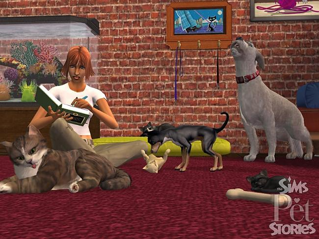 Autors: LKJH Sims pets !