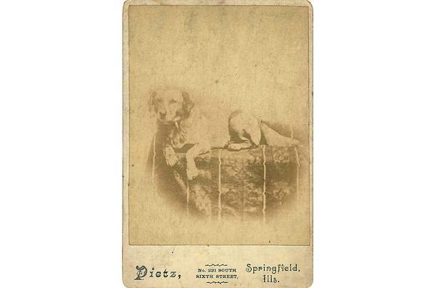 Ābrahama Linkolns suns Fido... Autors: aisse Valsts pirmie suņi