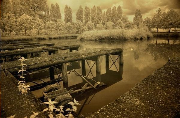 Autors: LittleWolf Pamestais Dadi parks