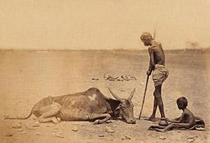 T 01 Vēsturisks foto no bada... Autors: bryanlv Top 10 – Dabas katastrofas