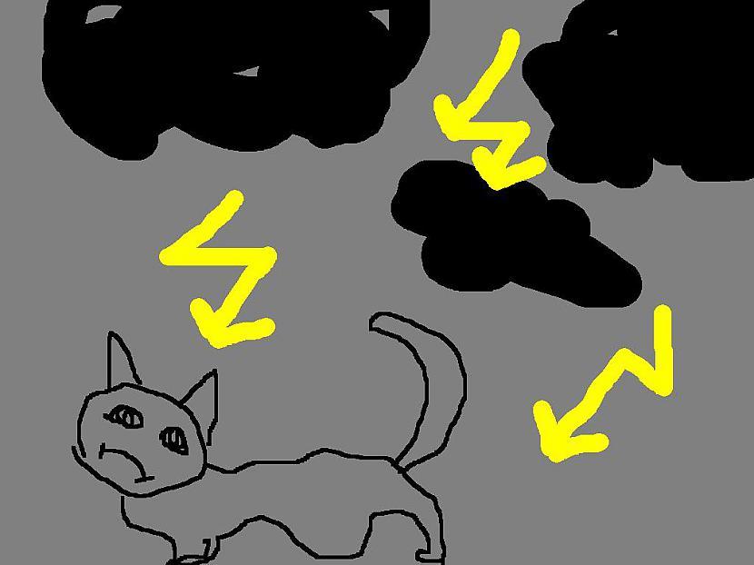 Arī dzīvniekiem neiet viegli... Autors: PizhikZ Mežonīgā vētra Rīgā!!!