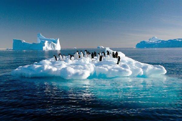 Aukstākā vieta  Gada vidējā... Autors: bizonis1 Laika apstākļu daudzveidība