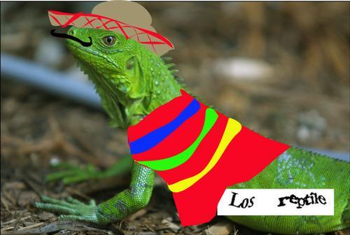 Los reptile Autors: dangy captcha`s komiksi.