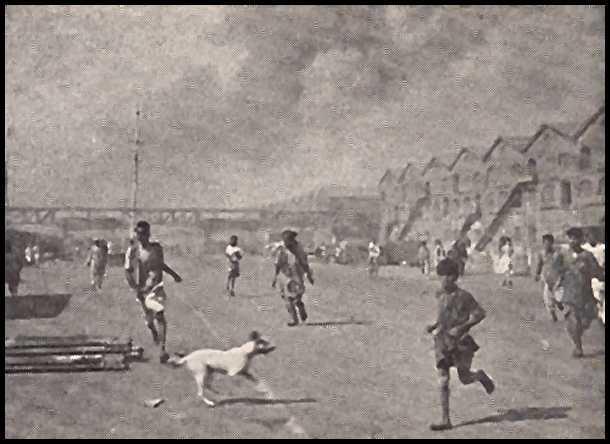 Sākās ugunsgrēki BombejāKoka... Autors: mazza22 pilsēta liesmās! (1944.gads)
