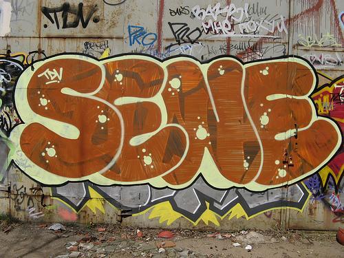 Sēne  Šis graffiti zīmētājs... Autors: Ruudiiz Rīgas Populārākie Graffiti Zīmētāji