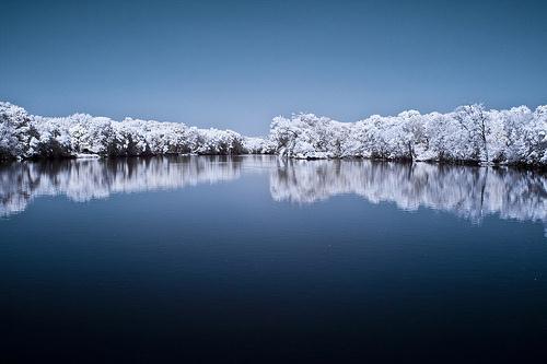 the dreaming tree Autors: jankabanka Neticami infrasarkanās fotogrāfijas paraugi.