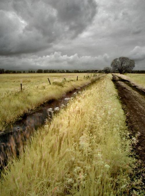 Frank Brauner Autors: jankabanka Neticami infrasarkanās fotogrāfijas paraugi.