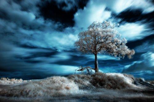 Dave Deluria Autors: jankabanka Neticami infrasarkanās fotogrāfijas paraugi.