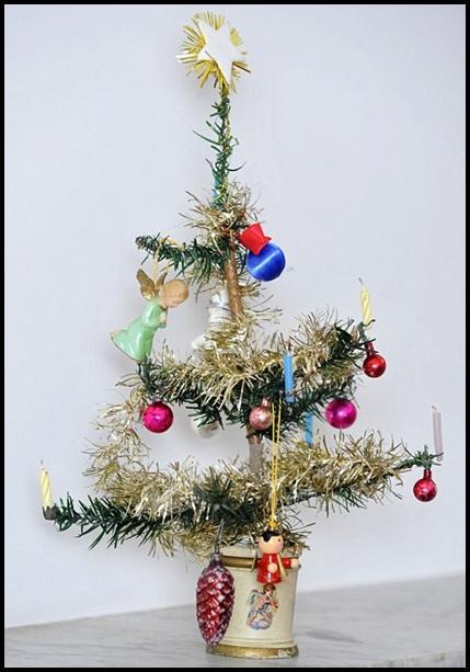35 centimetrus augstā eglīte... Autors: Huligāns Pasaulē vecākā Ziemassvētku eglīte