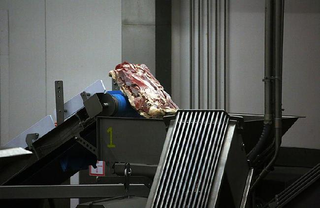 Krievijas gaļā ir 8 37 tauku... Autors: Nāriņš Kā taisa gaļu burgeriem, kuri nonāk McDonaldā