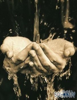 Autors: Kadets Uz sieviešu rokām ir vairāk baktēriju!