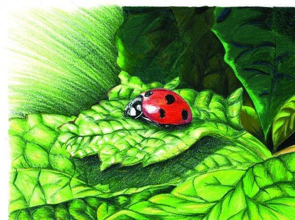 BizbizmārĪte jeb Ladybird ir... Autors: LeeMairo Par simboliem 1 daļa.