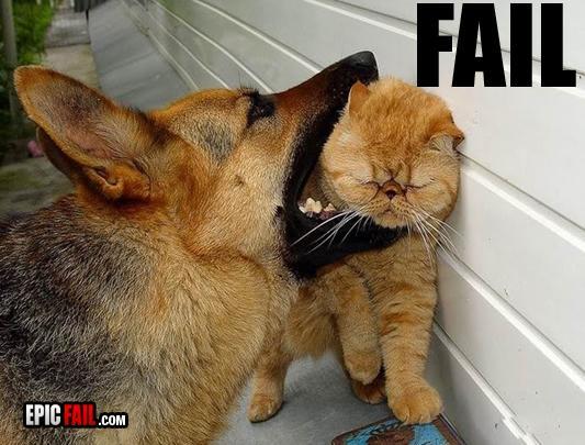 Autors: Fosilija Animals FAIL.