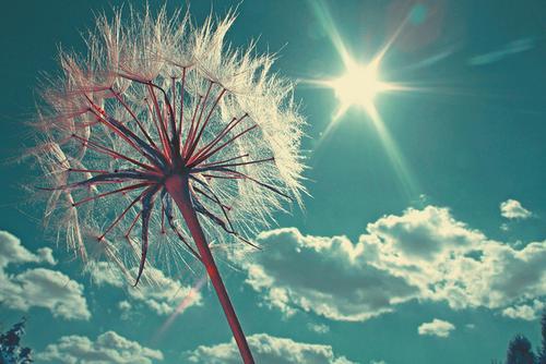 Autors: mazaiscepumiņš summer-winter