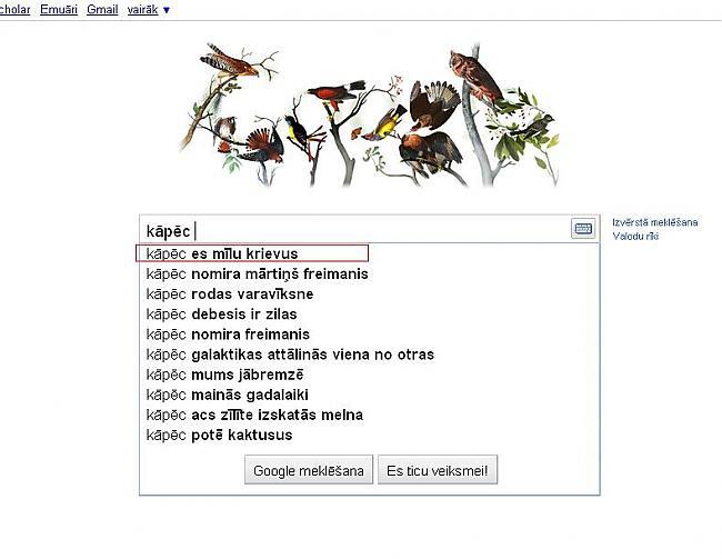 Kāpēc   potē kaktusus  KO ... Autors: Marchix Ko mēs prasām @ Google