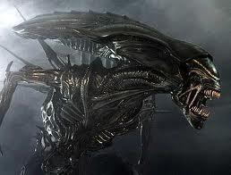 Un aliens Autors: FKnEwS Aliens vs predator 3