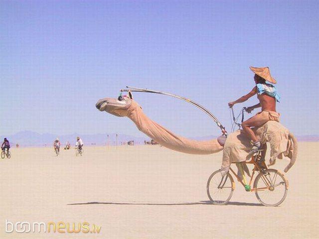 Autors: THUNDERTRUCKS Paši neparastākie velosipēdi