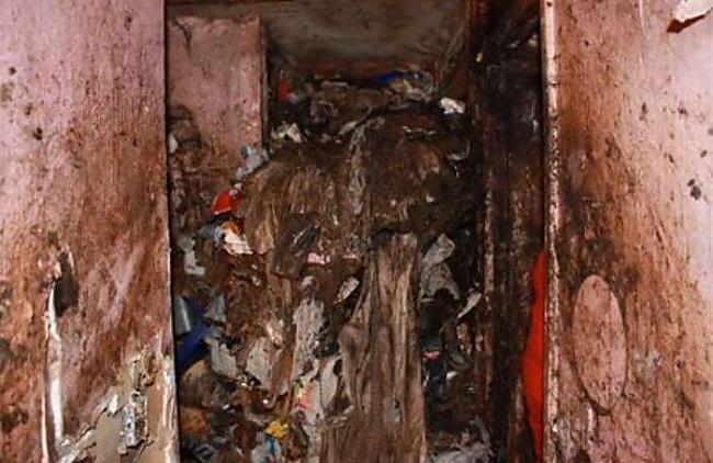 Autors: ČOPERS Domā ka tev ir netīra māja!?