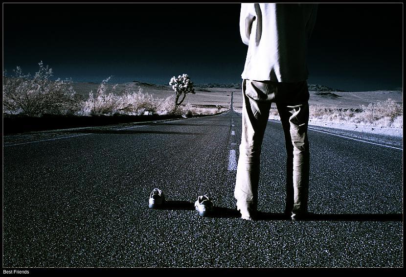 Kad Tu lido lejup no tilta Tu... Autors: Fosilija Šim vakaram :)*