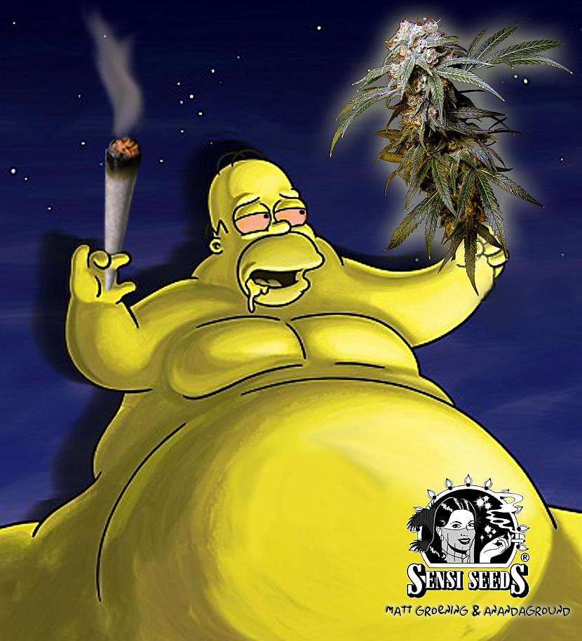 Viņam ir problēmas ar lieko... Autors: abols1 Homer Simpson.