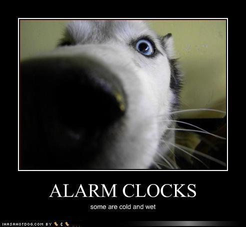 Scaronodien rītā negaidīti... Autors: RSblackberry Fml