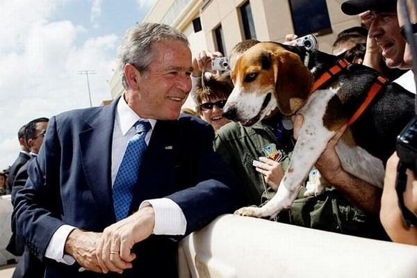 Autors: Boni Bijušais ASV prezidents Džordžs Bušs