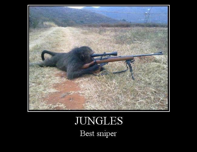 Autors: Puke Jungles