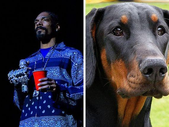 Snoop Dogg  Doberman Autors: Fosilija Slavenību dvīņi!