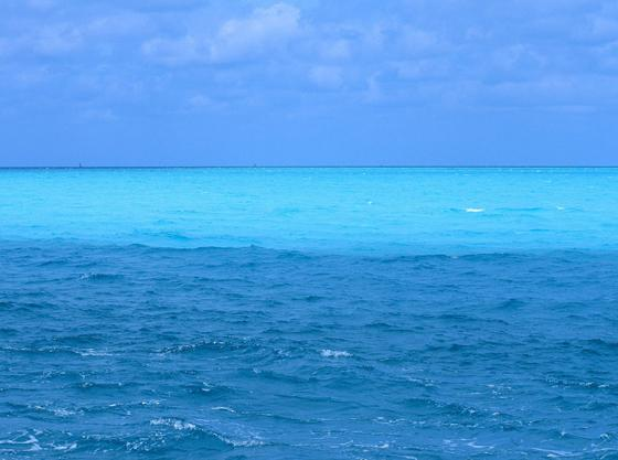 Ja no visiem okeāniem un jūrām... Autors: waterstar Vai vari atbildēt?