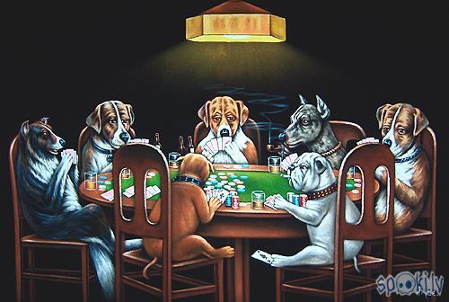Autors: dzidza Pokers!