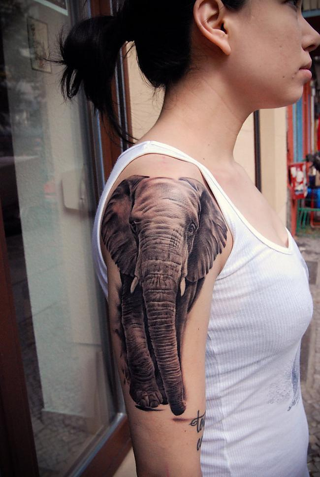 Autors: Fosilija 50 Tetovējumi