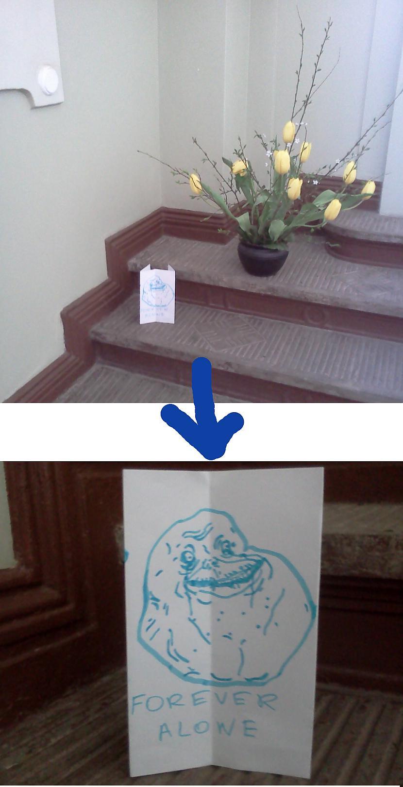 Šāda puķīte stāvēja Liepājas... Autors: Chrome Random bildes, fočētas ar telefonu.