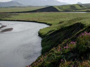 Unimak sala  Apkārtējā ainava... Autors: Krokočalis TOP 10 - Pasaules vulkāni