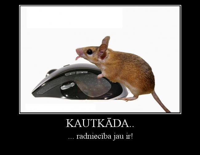 Autors: Burunduks why Kautkāda..