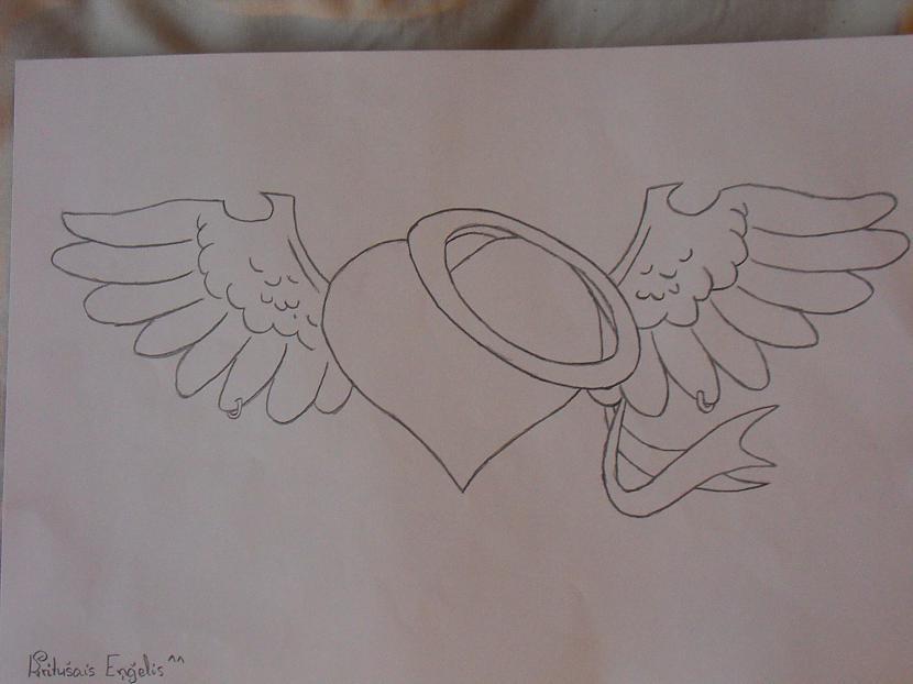 Sirds Autors: Gerkhan Zīmējumi