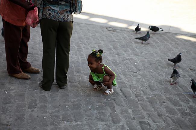 Nu un tagad mazliet būs daudz... Autors: Fosilija Cuba libre