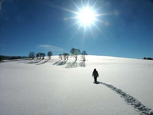 Autors: Pončo Par godu pirmajam sniegam!