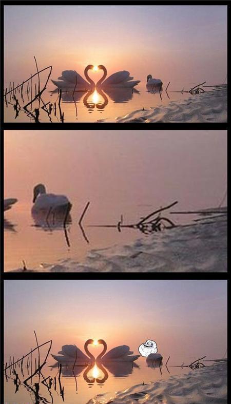 Autors: zirnekļcūks Cartoon Pictures 93