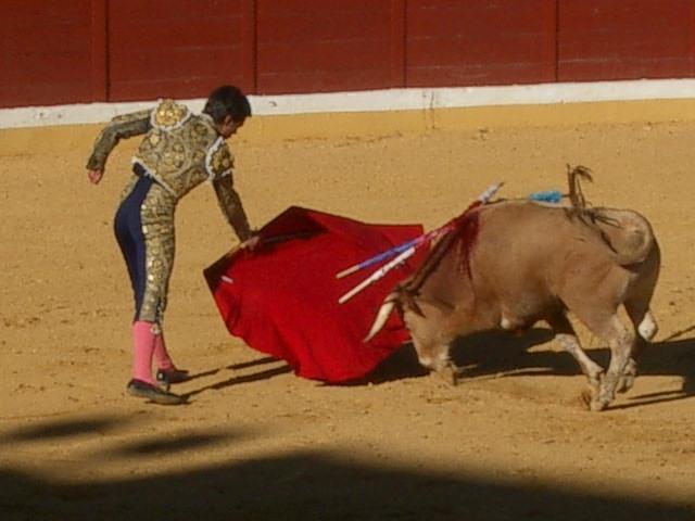 Spānijas pilsētā Barselonā 25... Autors: meitēnsss 2011. gada izskaņa.