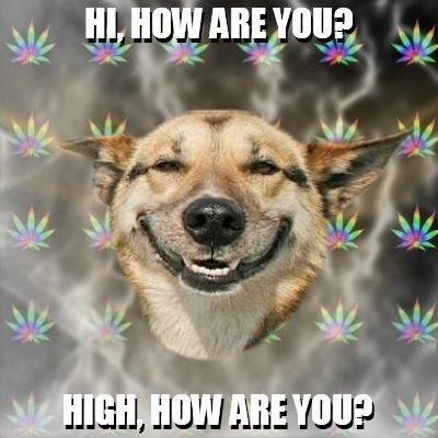 Autors: NoSthing Stoner Dog