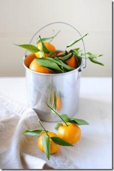 19 gadsimta sākumā mandarīns... Autors: 420weedscopr420 Par mandarīniem un to izvēli!