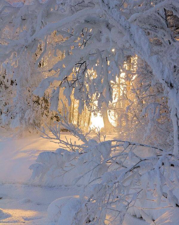 Autors: Eiropa es zinu,ka Jums patīk ziema ;D