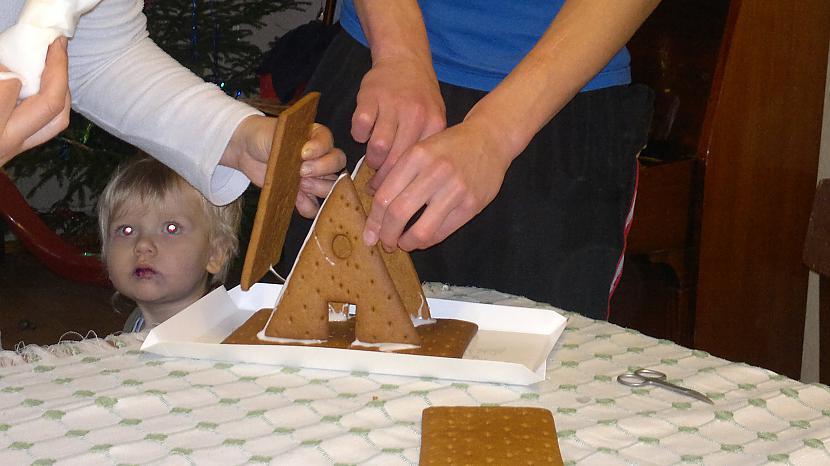Darbojos Autors: Zilais Kamielis Uzbūvējām Māju no Cepumiem un Cukura!