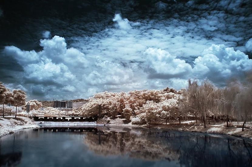 Autors: Fosilija Infrasarkanās fotogrāfijas.