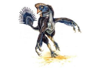 Amerikā Jūtas štatā... Autors: linards8787 interesanti fakti par dinazauriem!