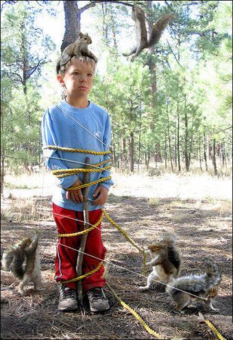Autors: Hipster jančuks Kad mīlīgi dzīvnieciņi uzbrūk!