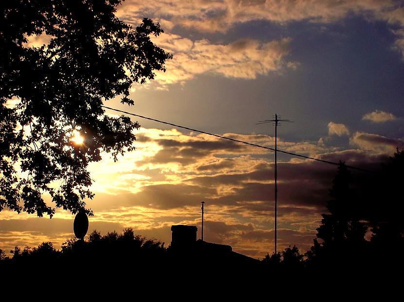 Autors: Fosilija Foto