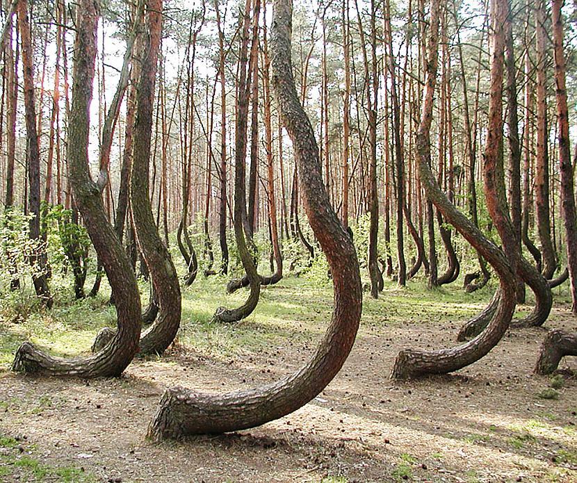 Polijanbsp Autors: sabaa310 10 no skaistākajām vietām uz zemes